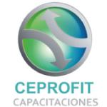 Logo of Ceprofit Capacitaciones SPA.